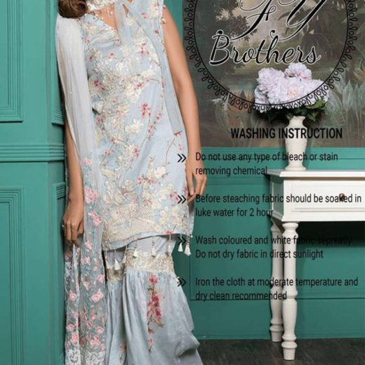RangRasiya Carnation Collection 2017