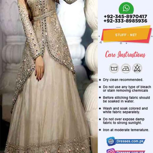 Pakistani Bridal Net Collection 2019