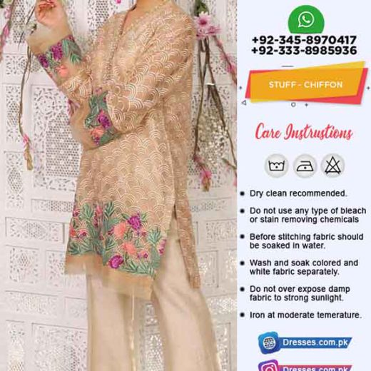 Pakistani Latest Chiffon Dresses