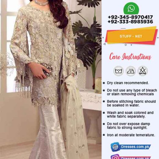 Pakistani net dresses collection 2019