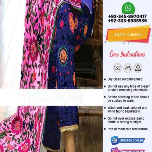 Phulkari Chiffon Collection Online