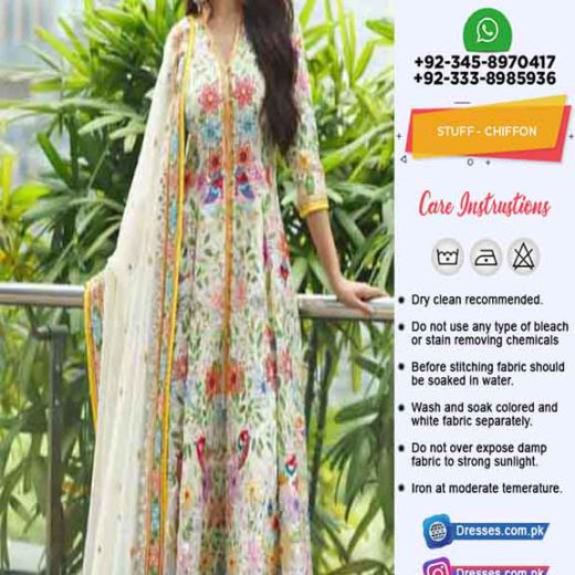 Pakistani Bridal Chiffon Clothes 2020