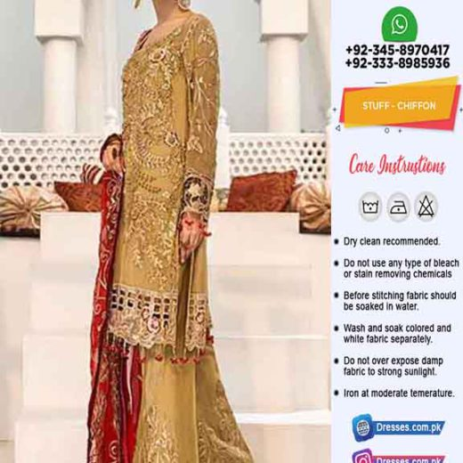 Zebtan Latest Chiffon Dresses 2020