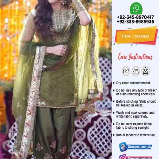 Pakistani Organza Collection Online