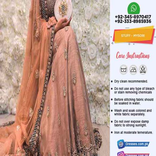 Indian Latest Bridal Frock Online